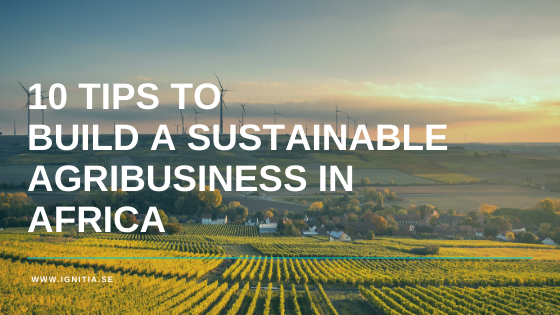 10 TIPS TO BUIL A SUSTAINABLE AGRIBUSINESS IN AFRICA