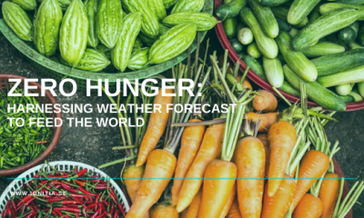 Zero Hunger, Ignitia, Food Security