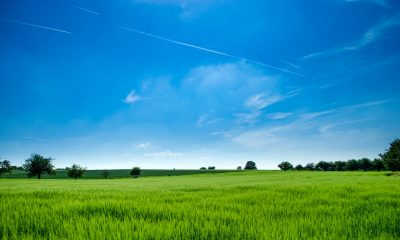 Accurate Weather Forecasts for Climate-Smart Agriculture