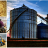 Agribusiness Companies in Nigeria